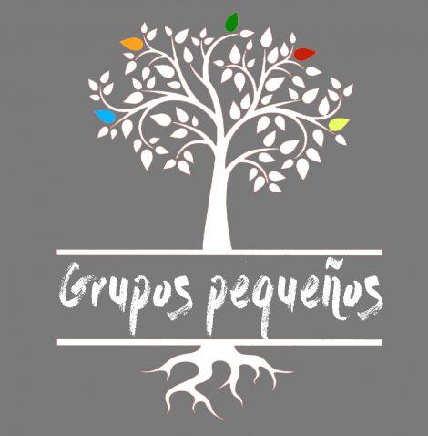 Grupos Pequeños